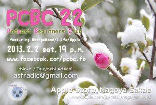 snow_pcbc22.jpg
